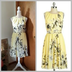 NWT Modcloth Eliza J Pale Yellow Floral Chiffon